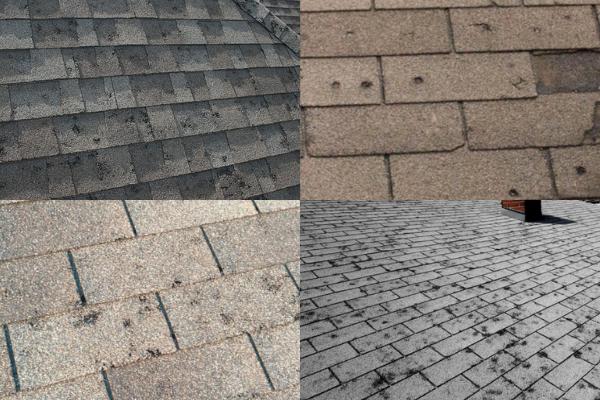 hail damage-website.png