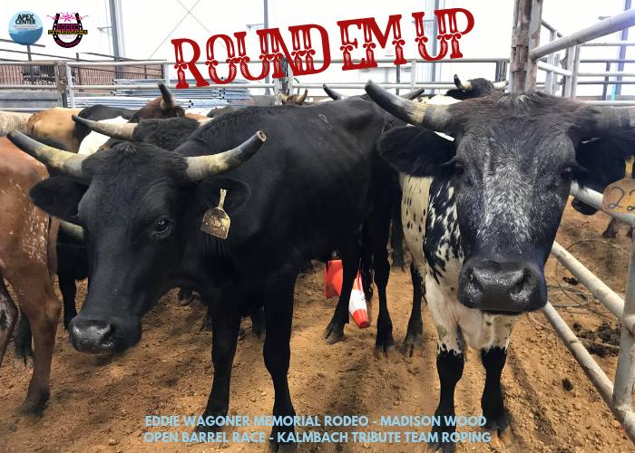 Copy of Rodeo Recap.png