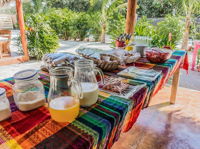 #Breakfast is served! The most important thing before starting a busy day is having a good breakfast. #JoyTulum #Tulum . . . . #Jungle #tulumvibes #vacation#summer #instatravel #travelgram #instagood #picoftheday #Photooftheday #food #igtravel #Backpackers #instatravel