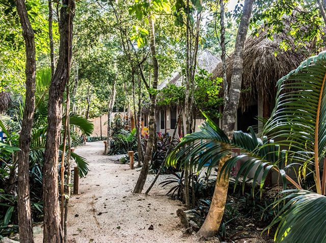 Do you already have a plan for the weekend? Escape to Tulum, which is more beautiful than ever. #JoyTulum #Tulum #HappyWeekend