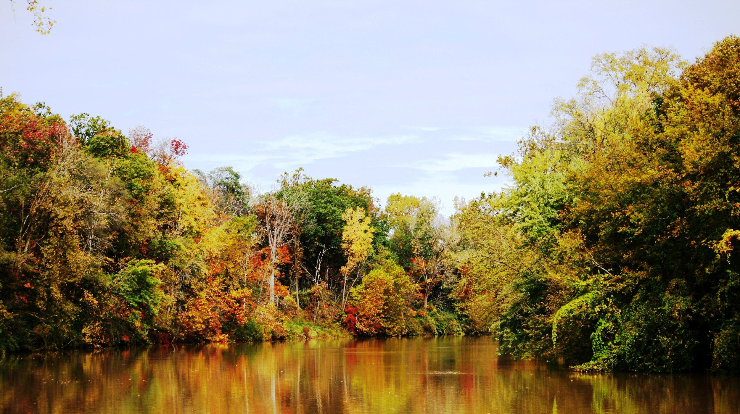 Fall River Colors.jpg