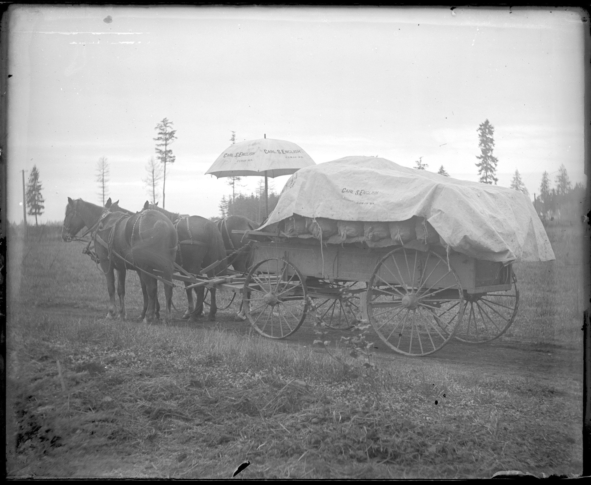Potatoes on the way to the Fort Vancouver Barracks to feed the soldiers housed there.