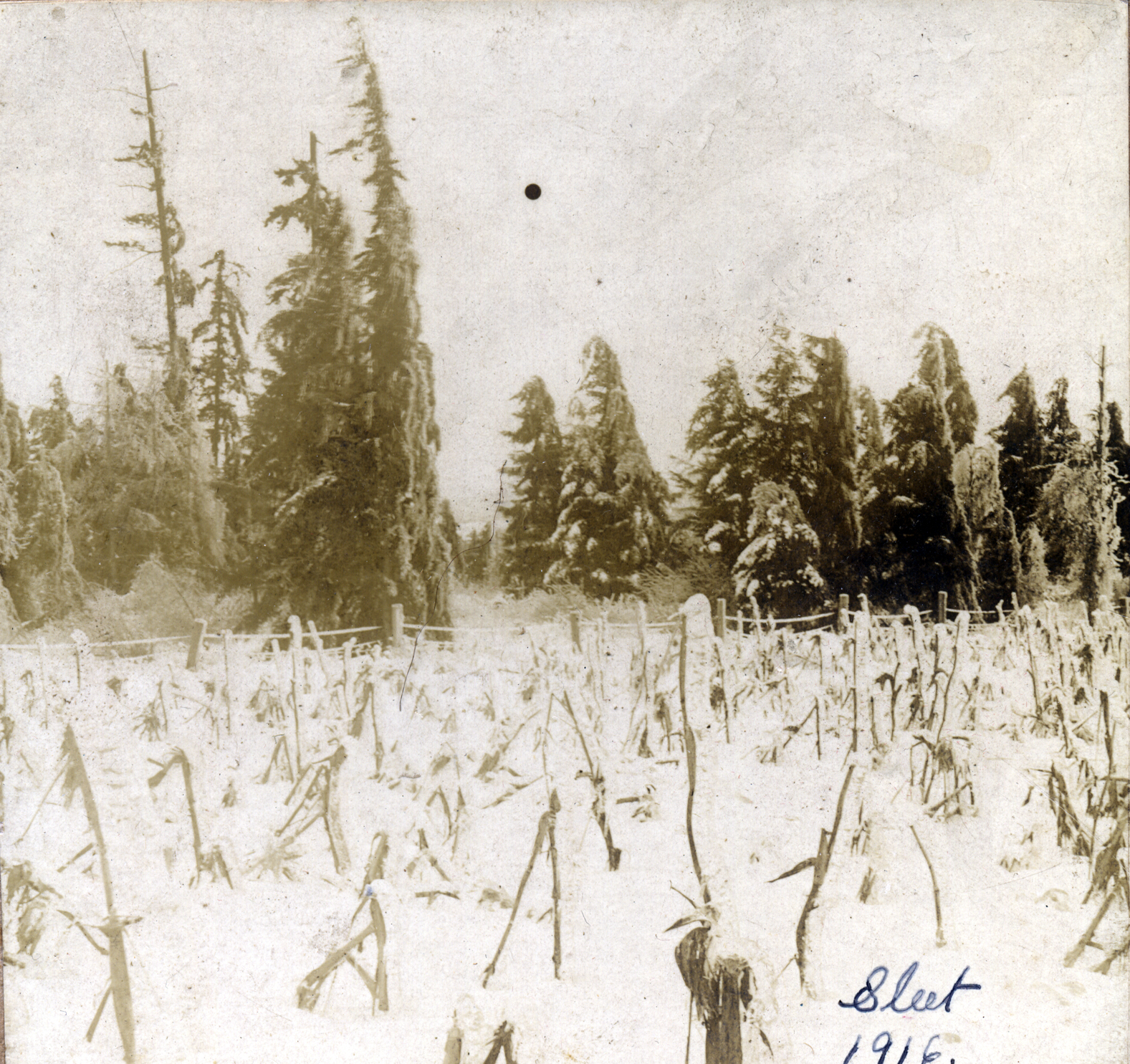 Ice storm, 1916.