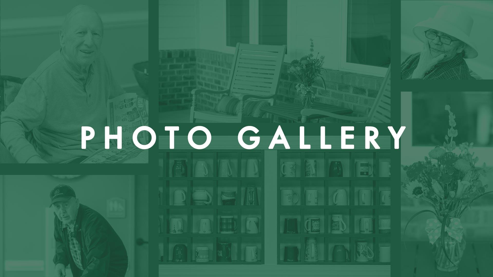 TheOaks_Photo_Gallery_Thumbnail_Inlet-Oaks.jpg