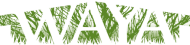 waya-logo-190.png
