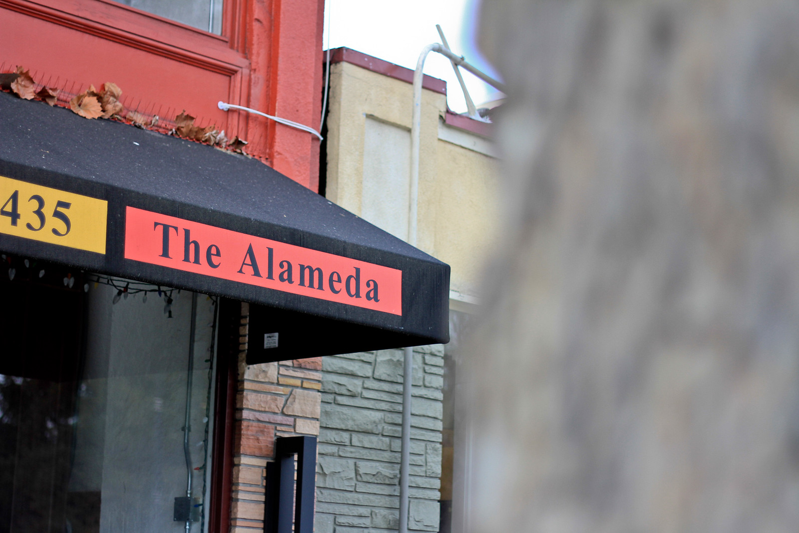 The Alameda.jpg