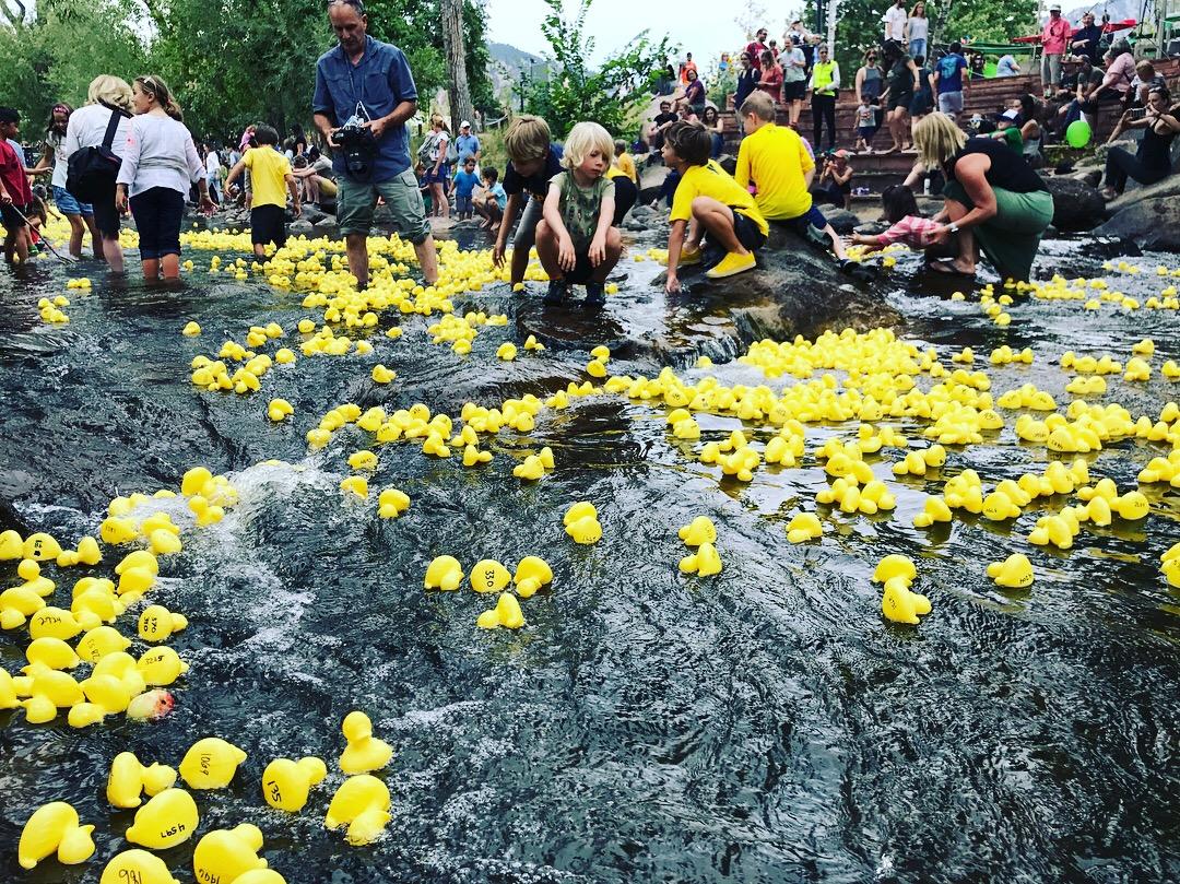 Duck Race -