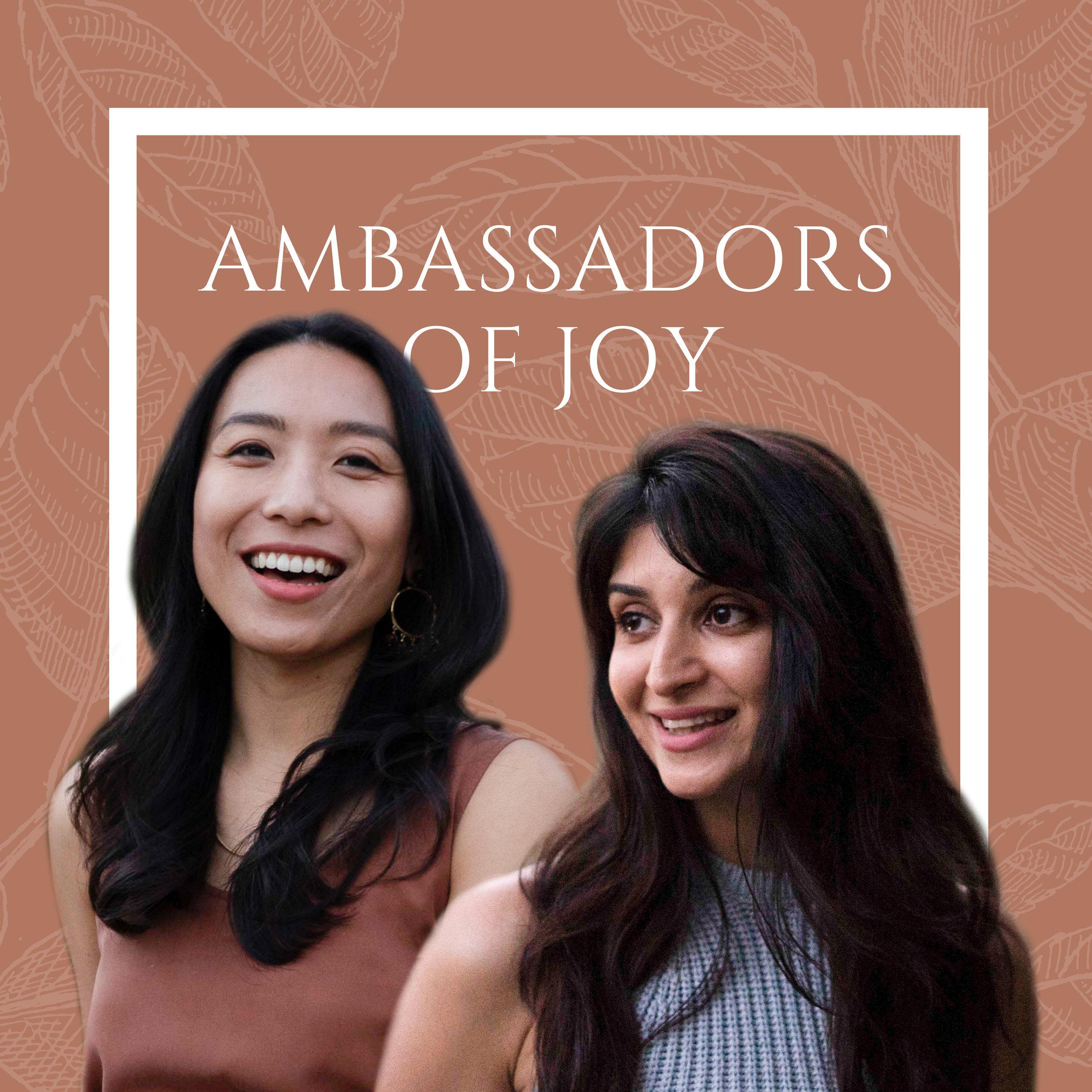 Ambassadors1540935239-artwork.jpg