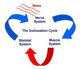 Subluxation interferes with the Nerve system