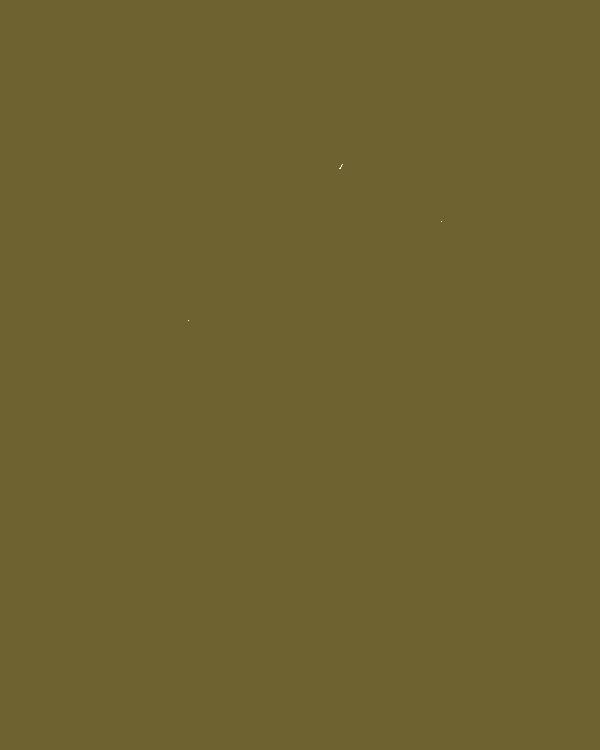 ShalomLogosage.png
