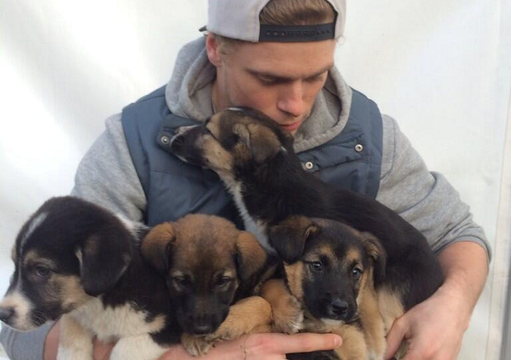 gus-kenworthy-saves-stray-puppies.png