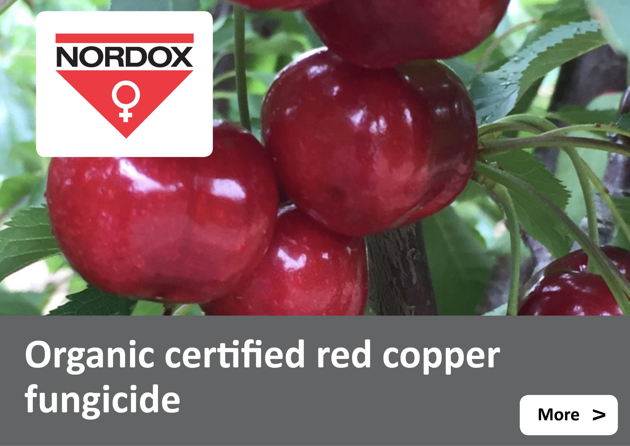 Nordox 750WG Copper Fungicide - red copper