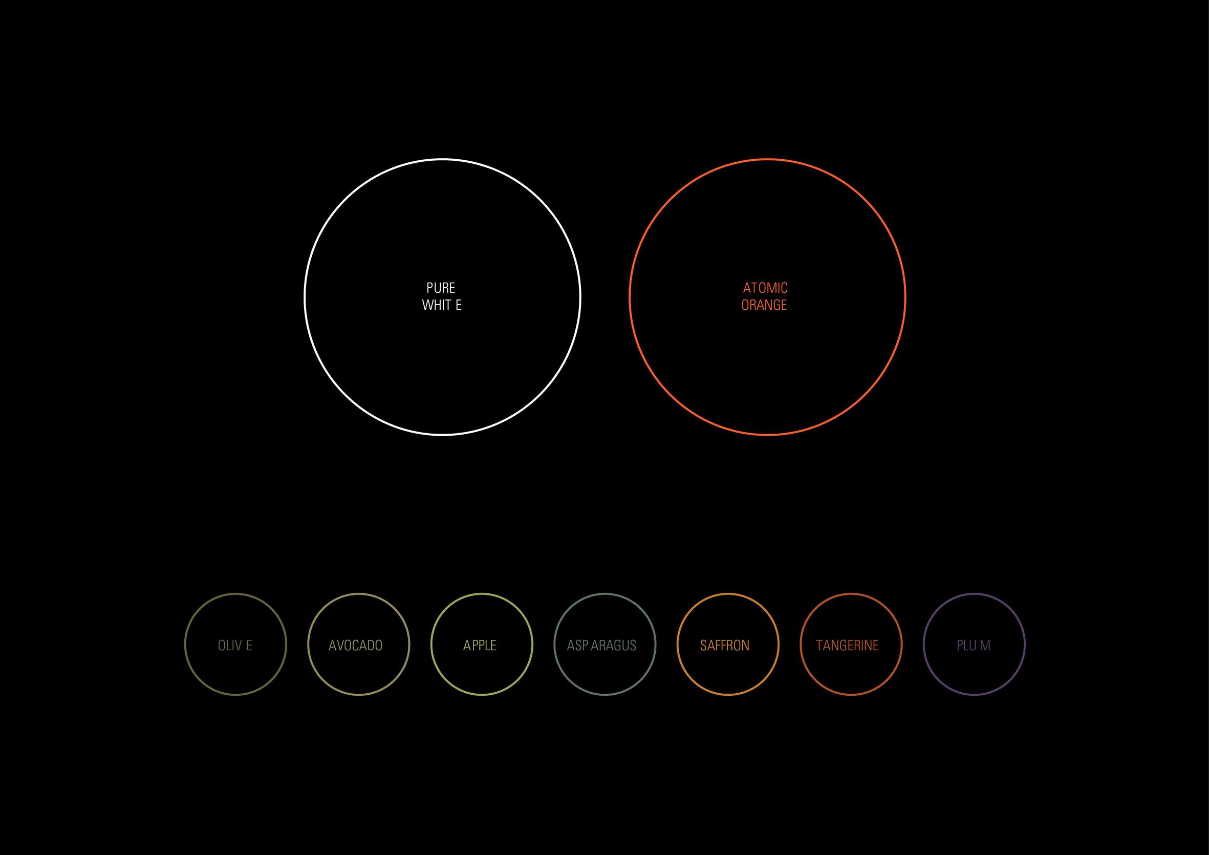 Blacksmith-identite-branding-couleur-palette.jpg