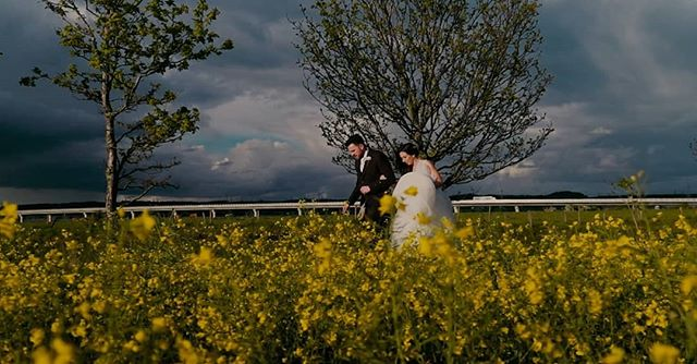 I love this image from the wedding of Michelle and Matthew  from 2017.  Such moody grey skies against the bright yellow of the field. So much so that I've chosen at for the homepage of my website!  #sunnywedding #scottishweddingfilm #scottishweather #stormy #weddingfilm #edinburghwedding #edinburghweddingvideo #kevinkey #visitscotland #engaged #engagementring #engagement #theknot #bridesmaid #affordableweddingfilm #cinematicwedding #coolcouple #sonyalpha #sonyfs5 #sonyimages #marriage