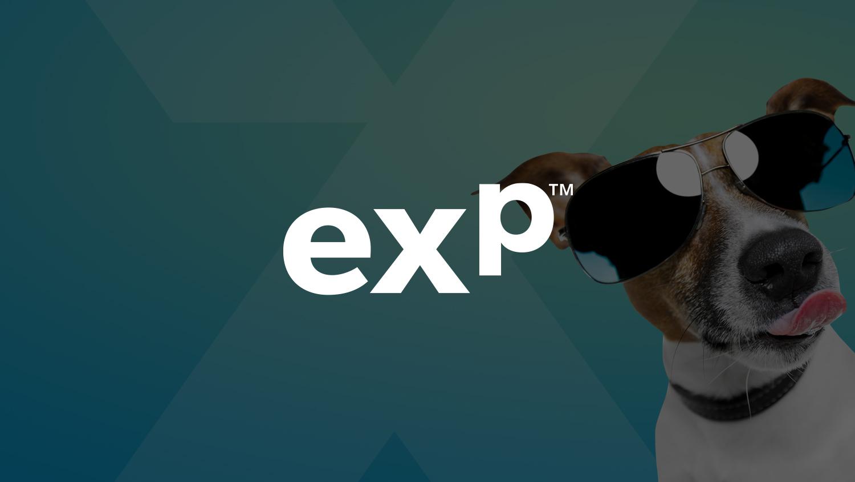Expat-intro_web.jpg