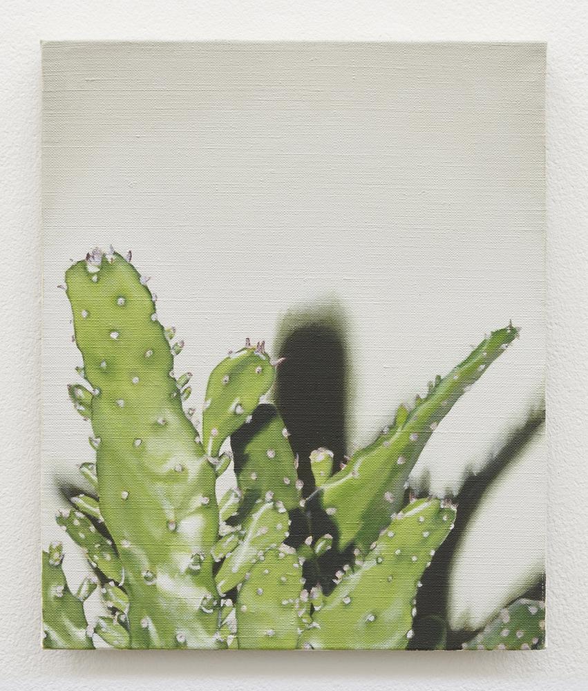 Cactus | oil on linen | 30 x 25 com