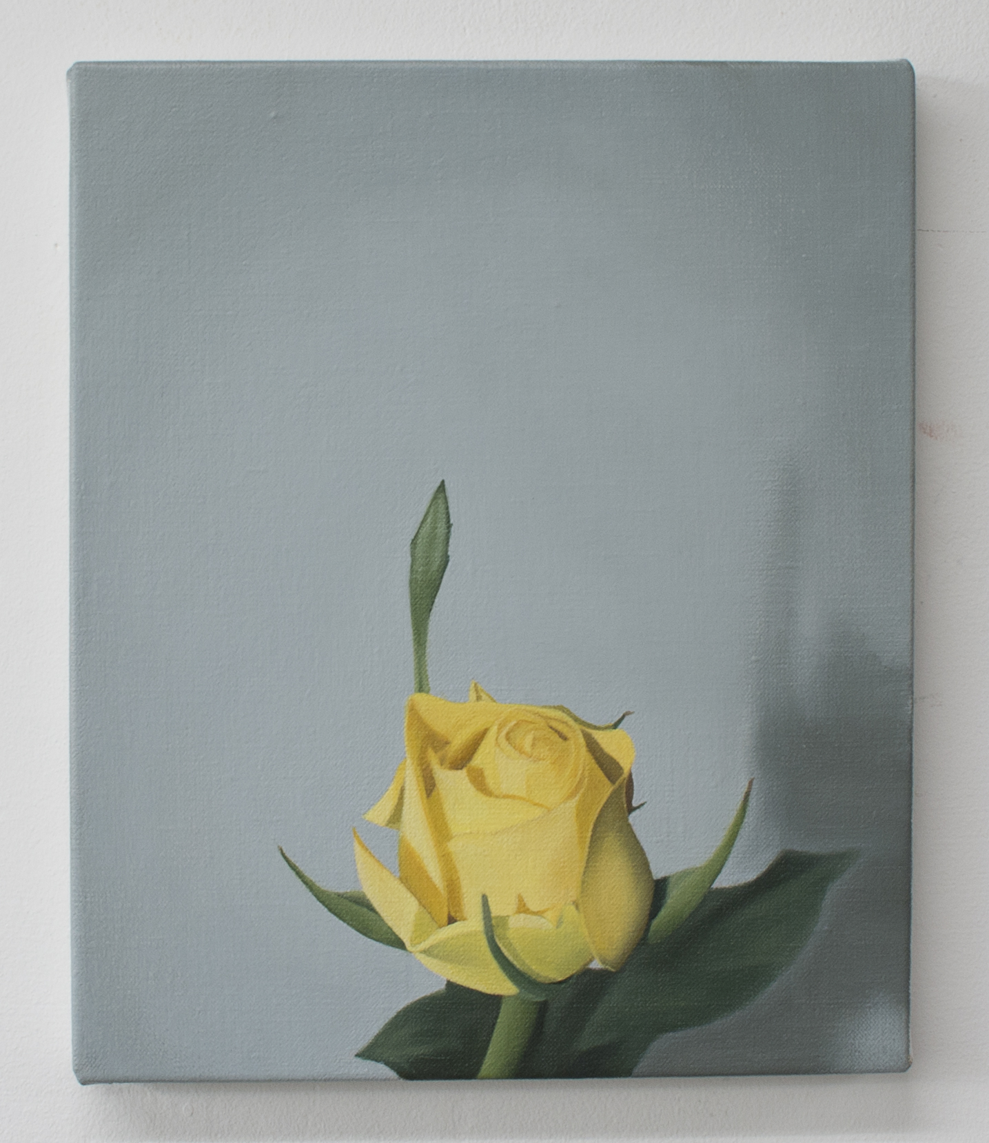 Yellow rose | 2018 | Oil on linen | 30 x 25 cm | OPW Collection IRE
