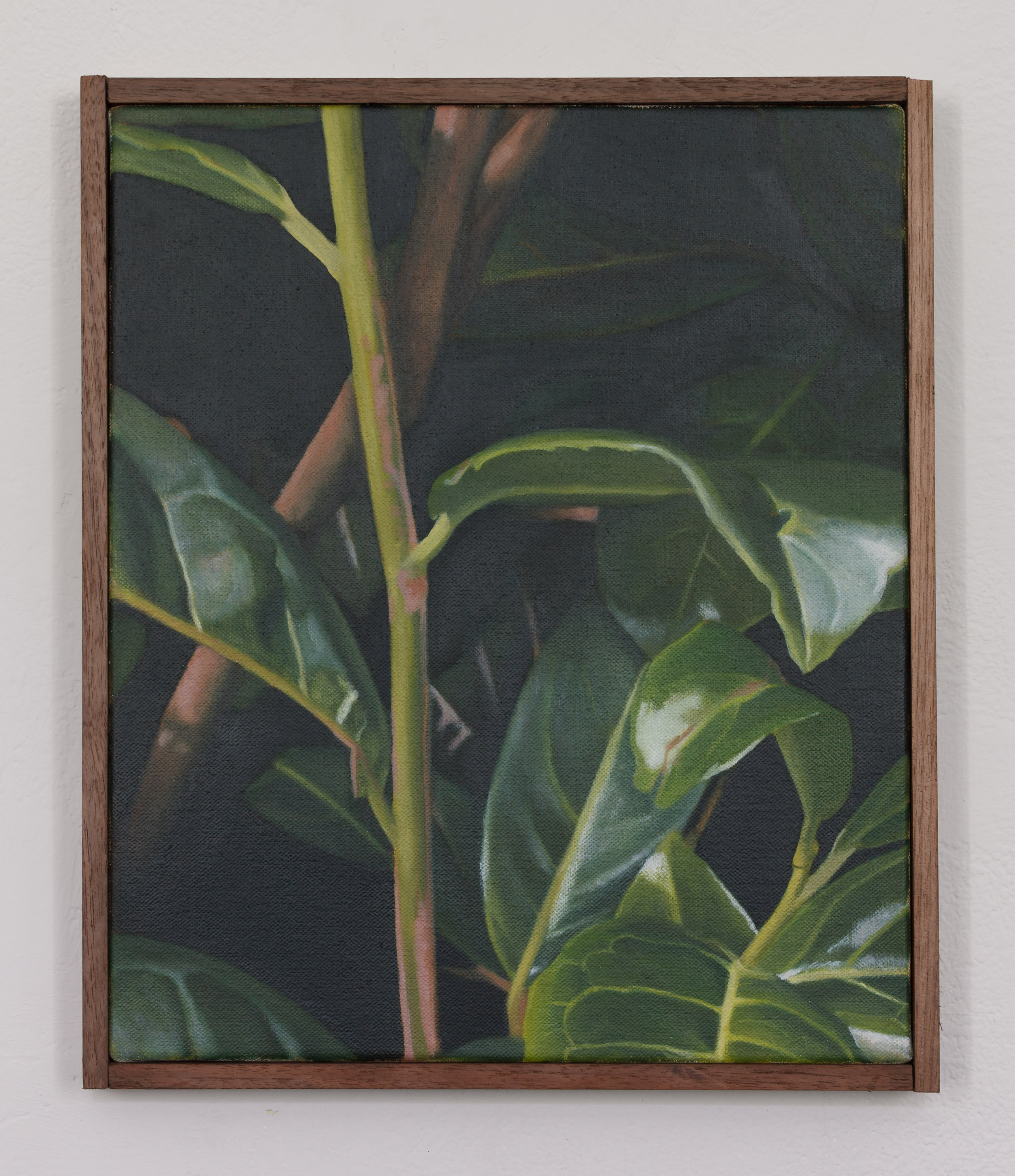 Laurel | 2018 | oil on linen | Mahogany frame | 31 x 26 cm | 12.2 x 10.2 in