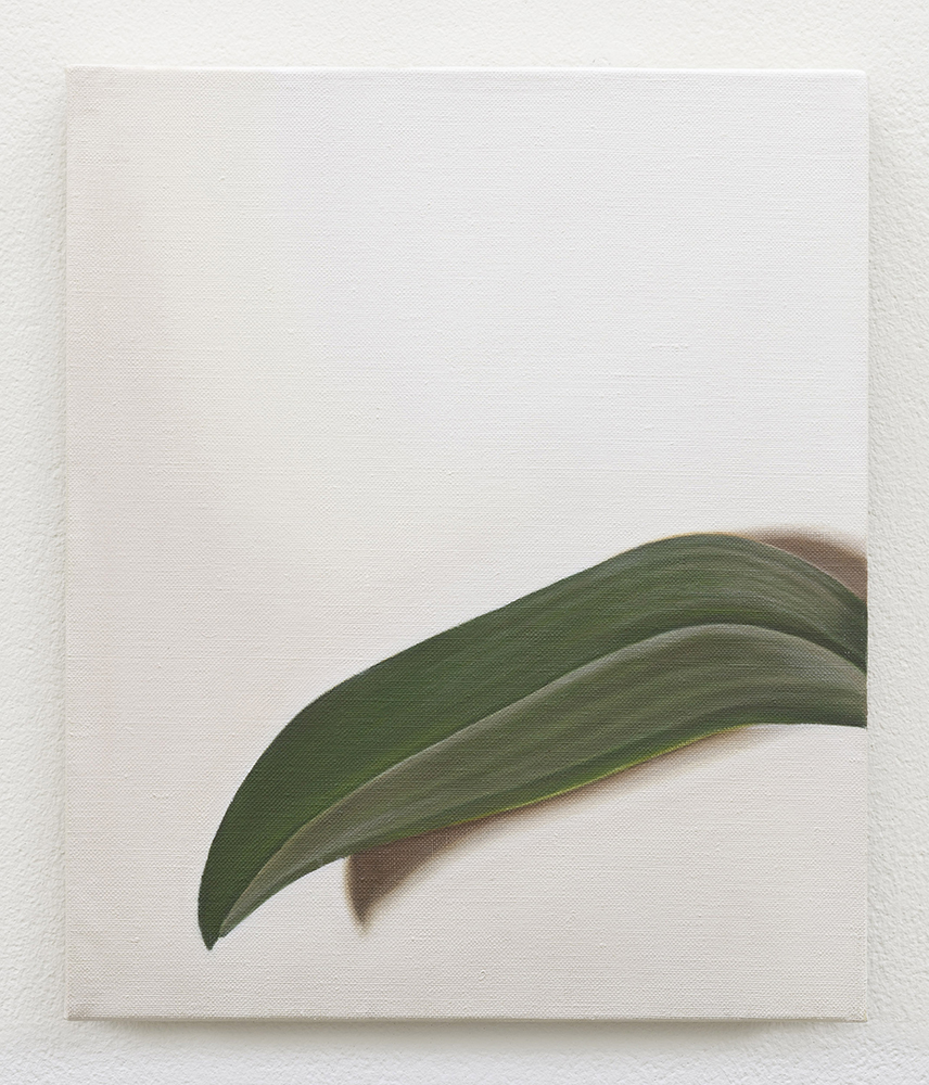 Leaf | 2017 | Oil on Linen | 30 x 25 cm | Available