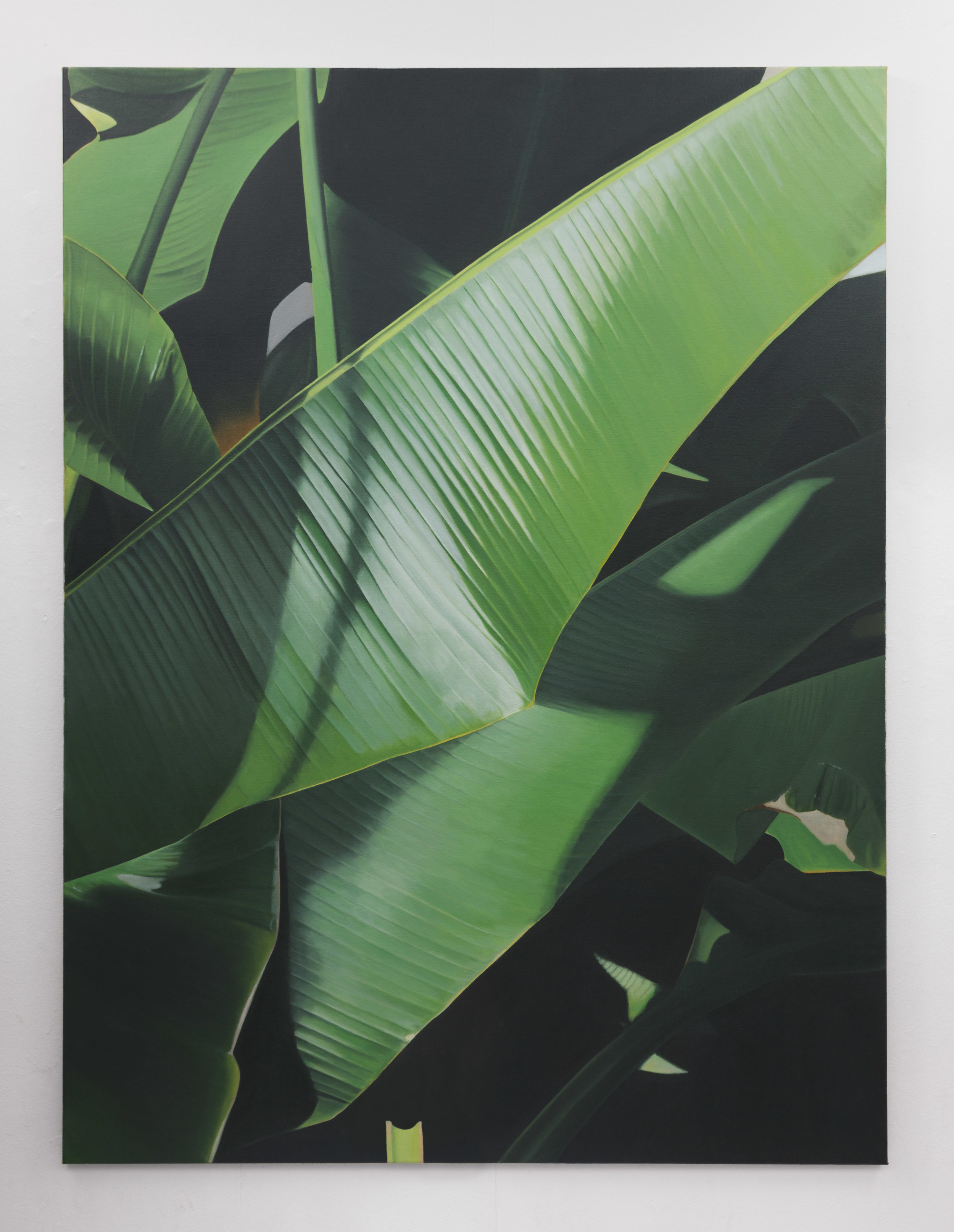 Banana I | 2019 | Oil on linen | 160 x 120 cm | Photo by Lee Welch | Shortlisted The RHA Hennessy Craig Award