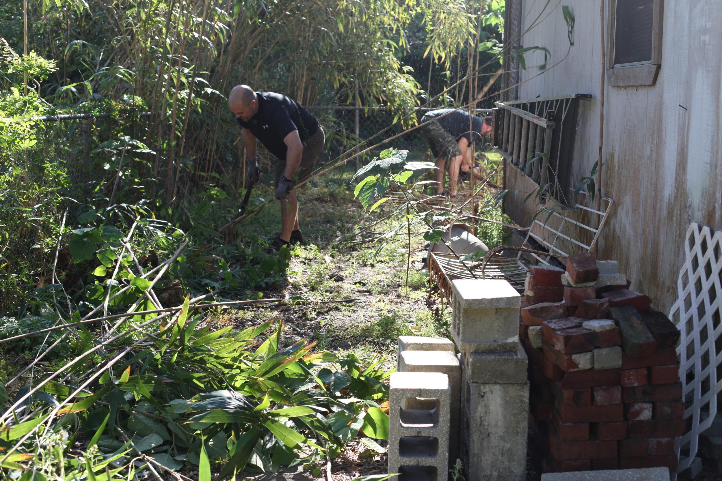 Copy of Yard Clean Up Alice.JPG