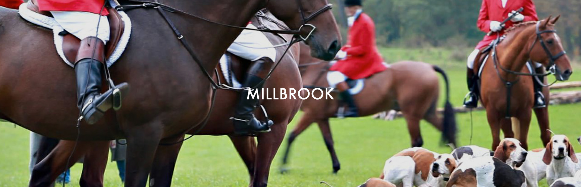 bluprint-case-studies-houlihan-lawrence-millbrook.jpg