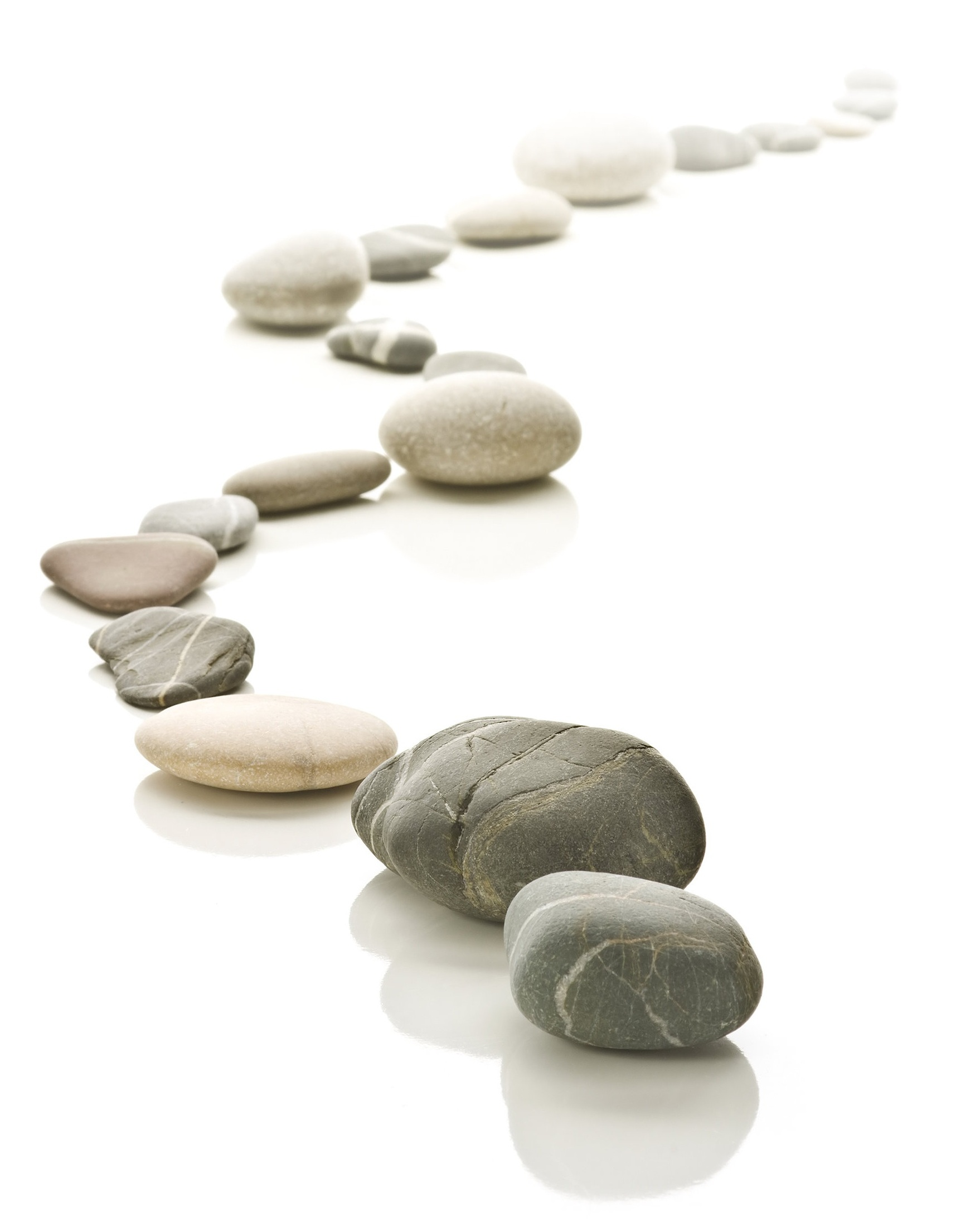 Rock path based off a balanced life brand and motto