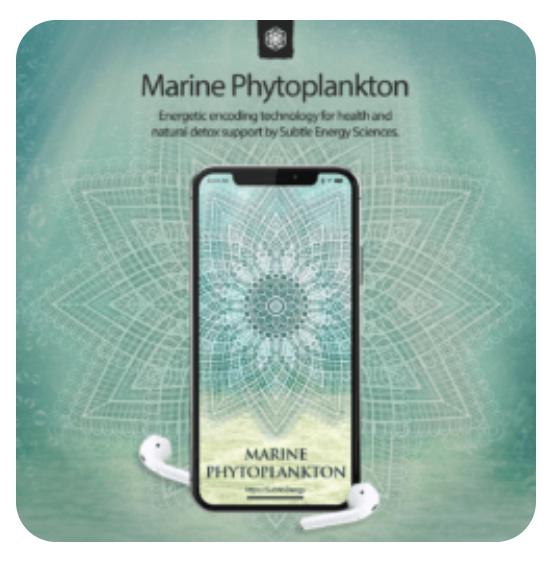 Marine Phytoplankton -