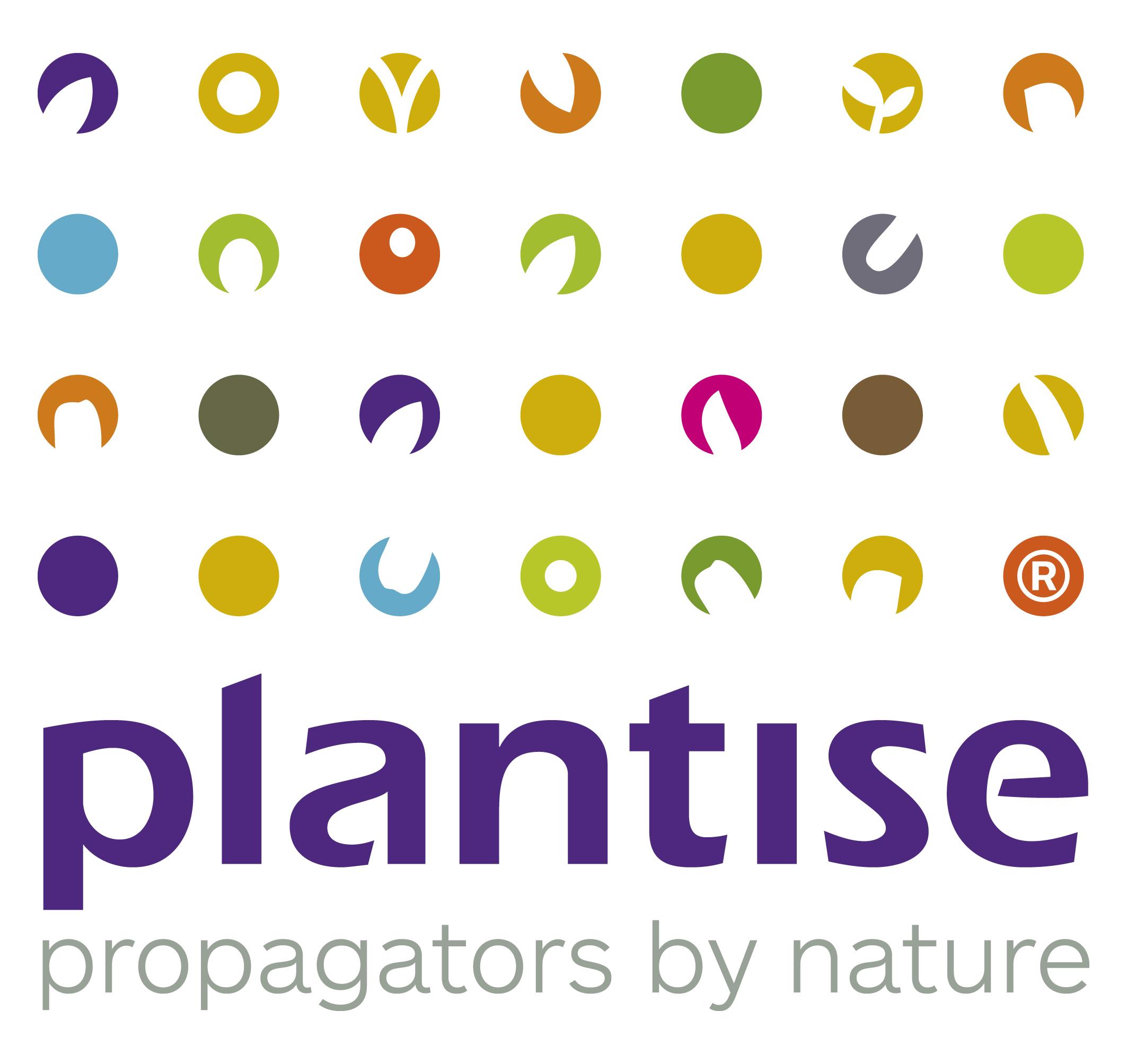 Logo Plantise.jpg