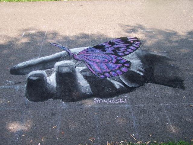 grid butterfly.jpg