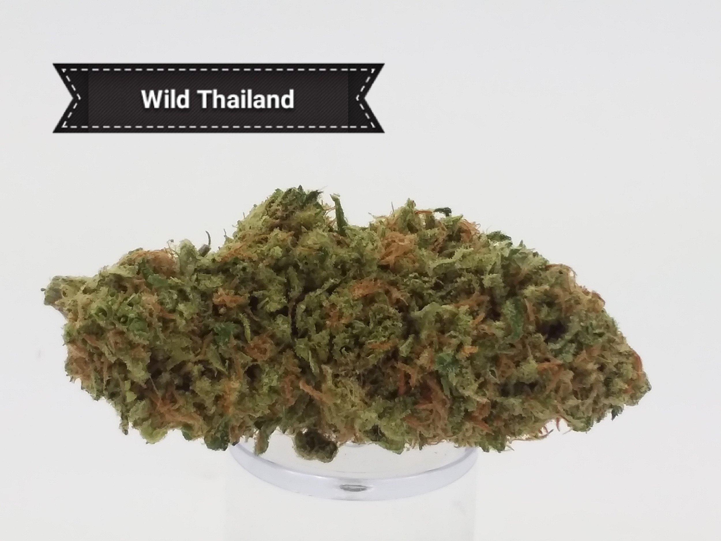 Wild-Thai.jpg