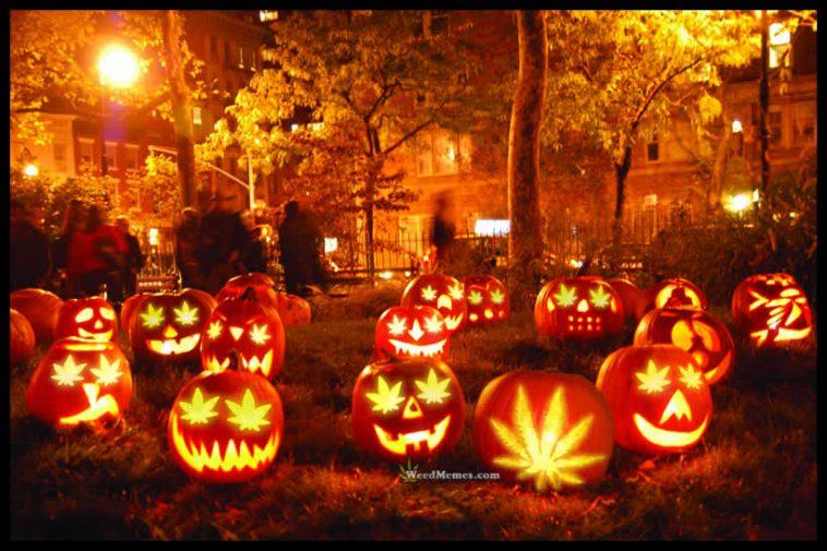 halloween-weed-pumpkin-carving-weedmemes-758x505.jpg