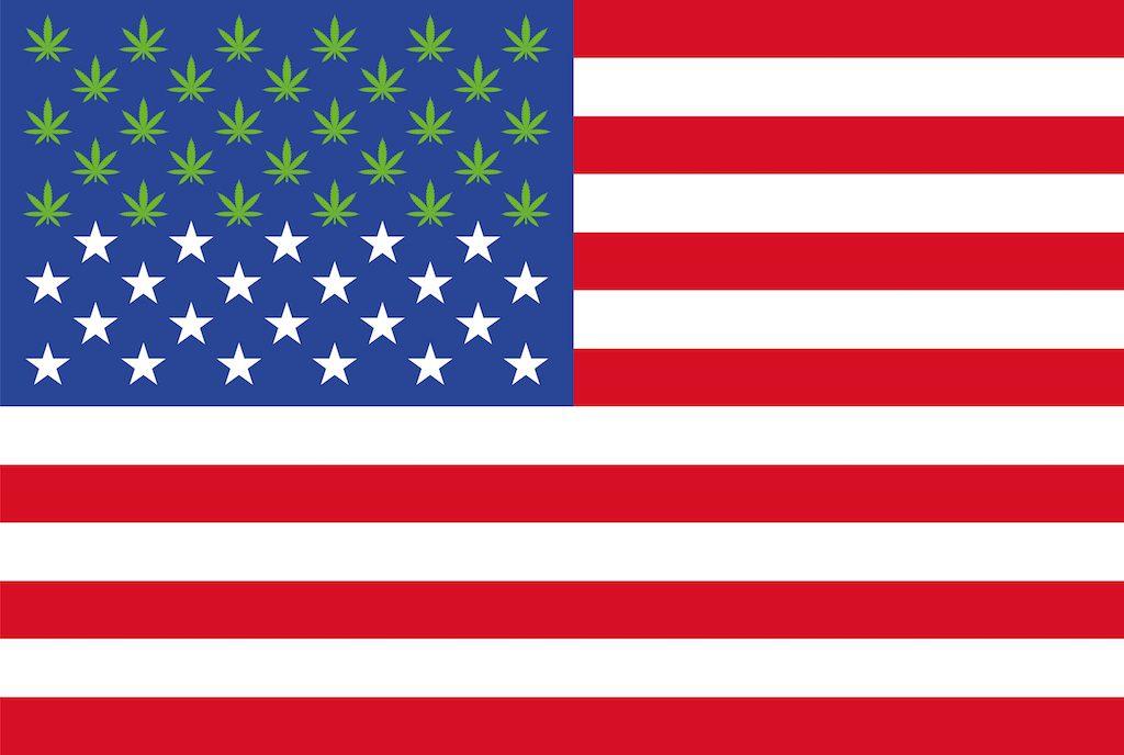Mary-Janes-Almanac-Weed-Flag-1024x688.jpg