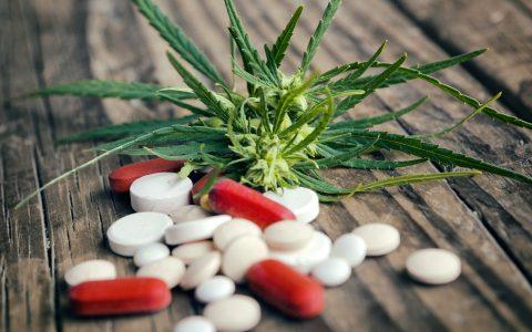 cannabis-intervention-opioids-480x300.jpg