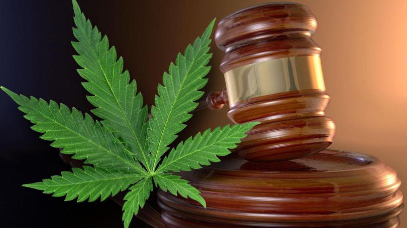 marijuana139.jpg