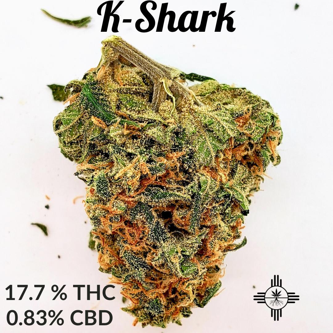 K-Shark