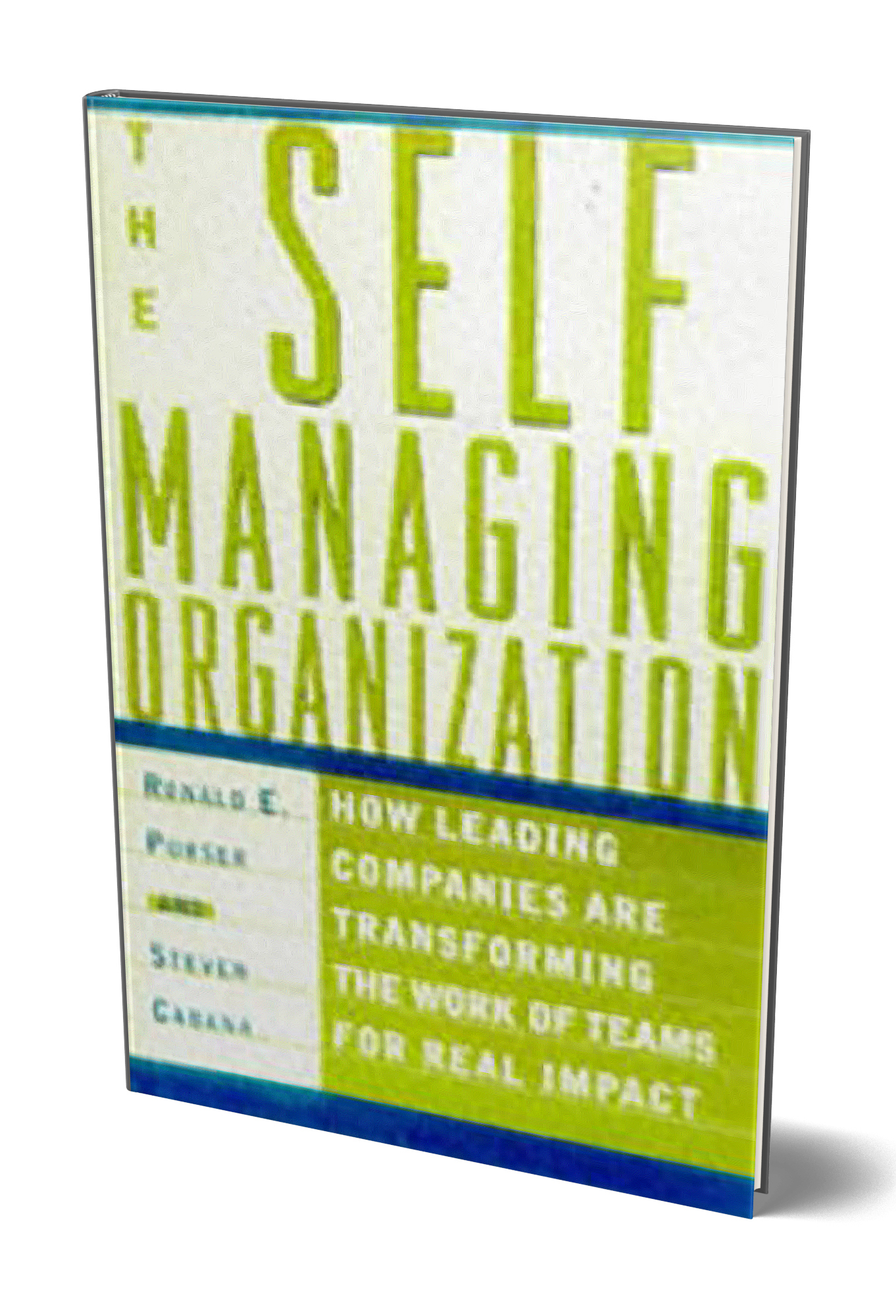The Self-Managing Organization : How Leading Companies Are Transforming the Work of Teams for Real Impact