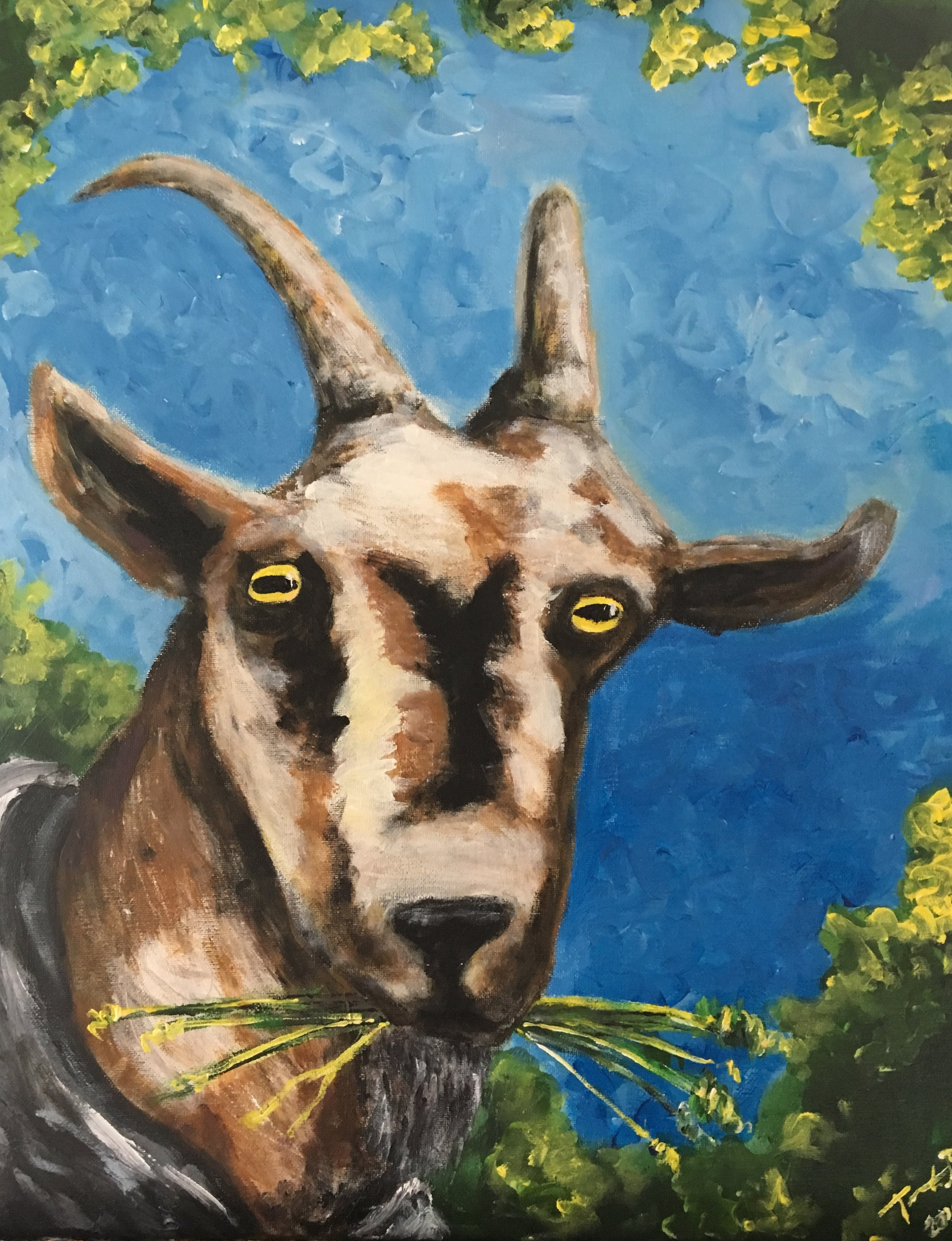 Goat with edibles.jpg