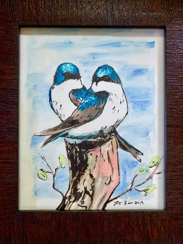 Tree Swallows.jpg