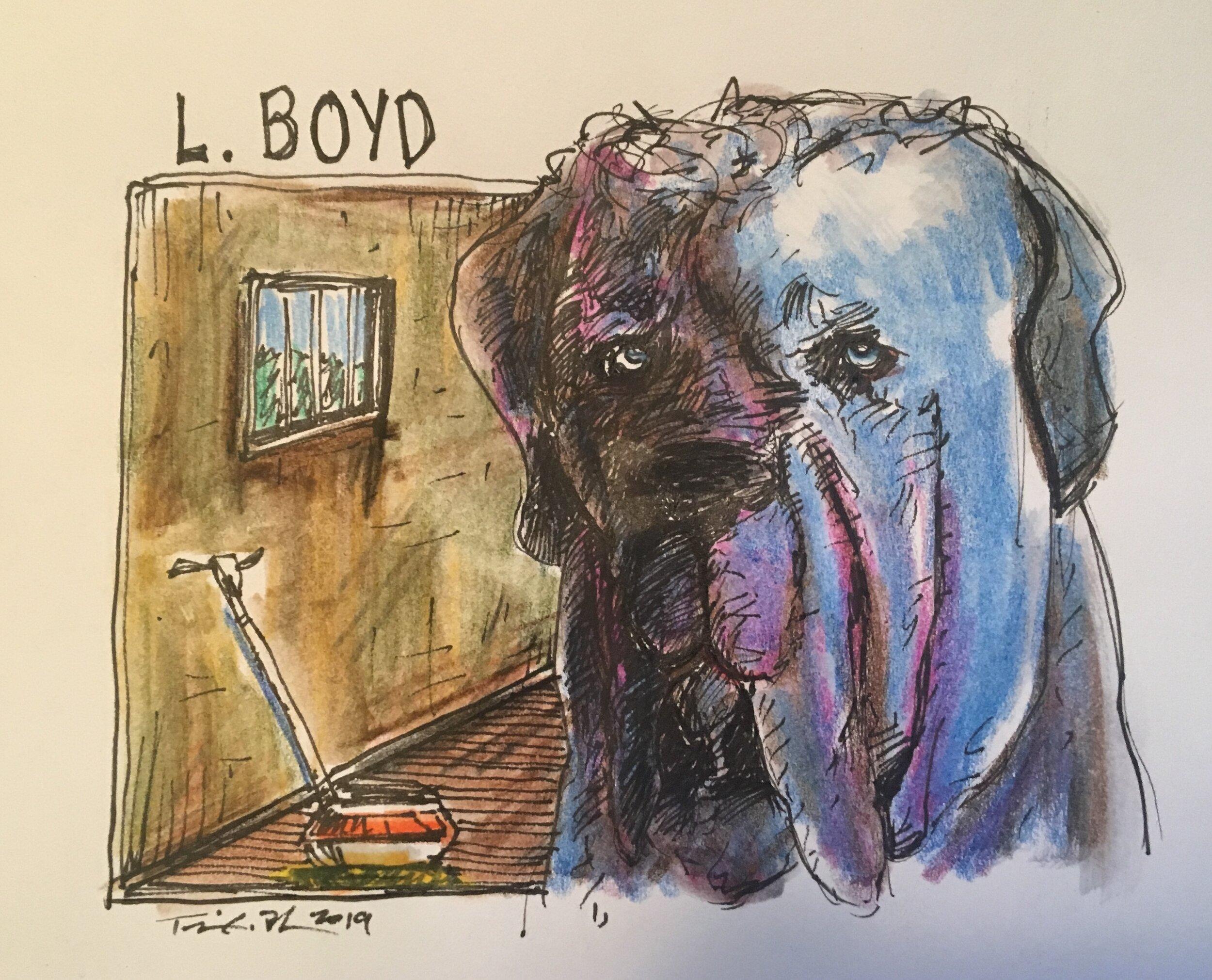 Boyd.jpg
