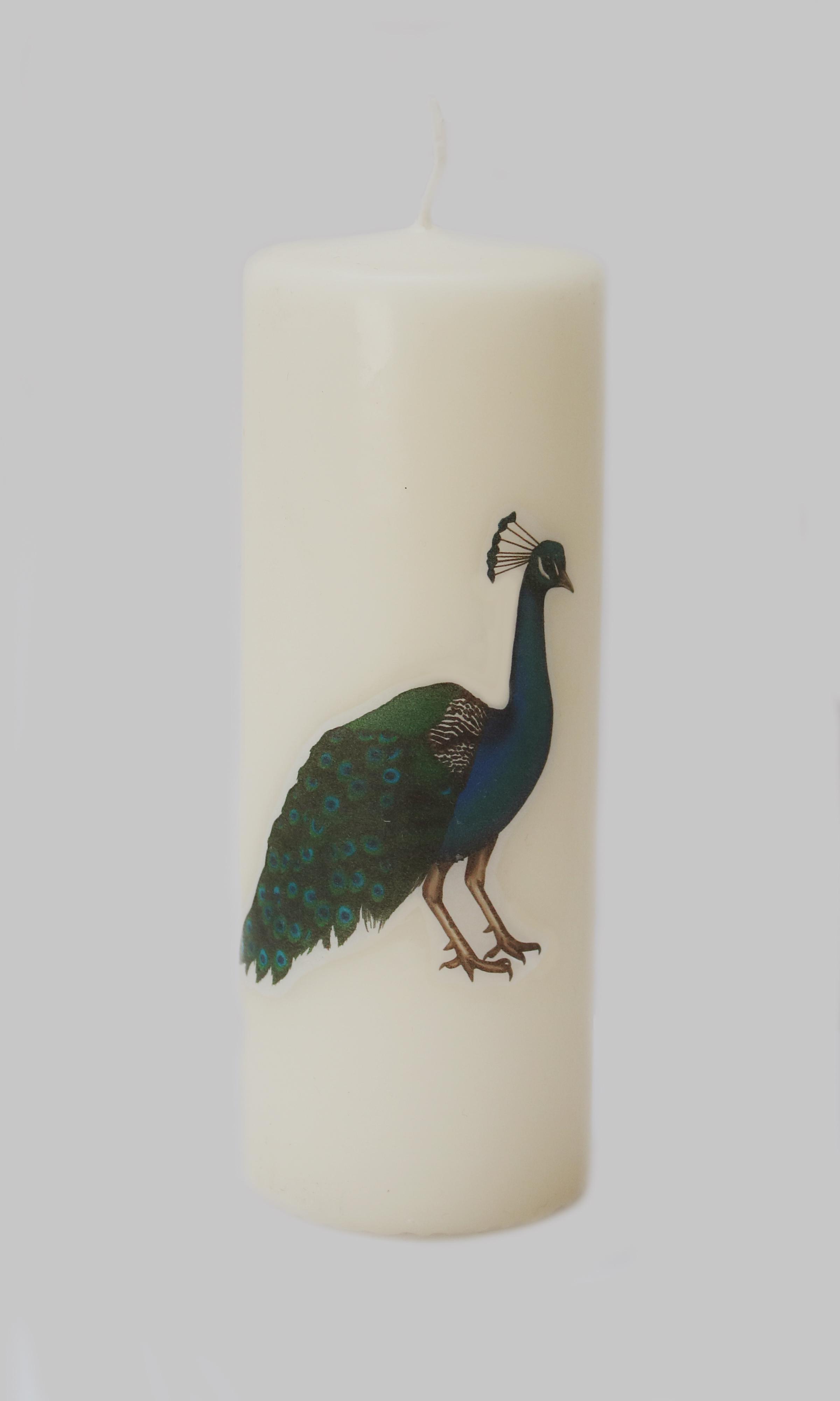 peacock-candle.jpg