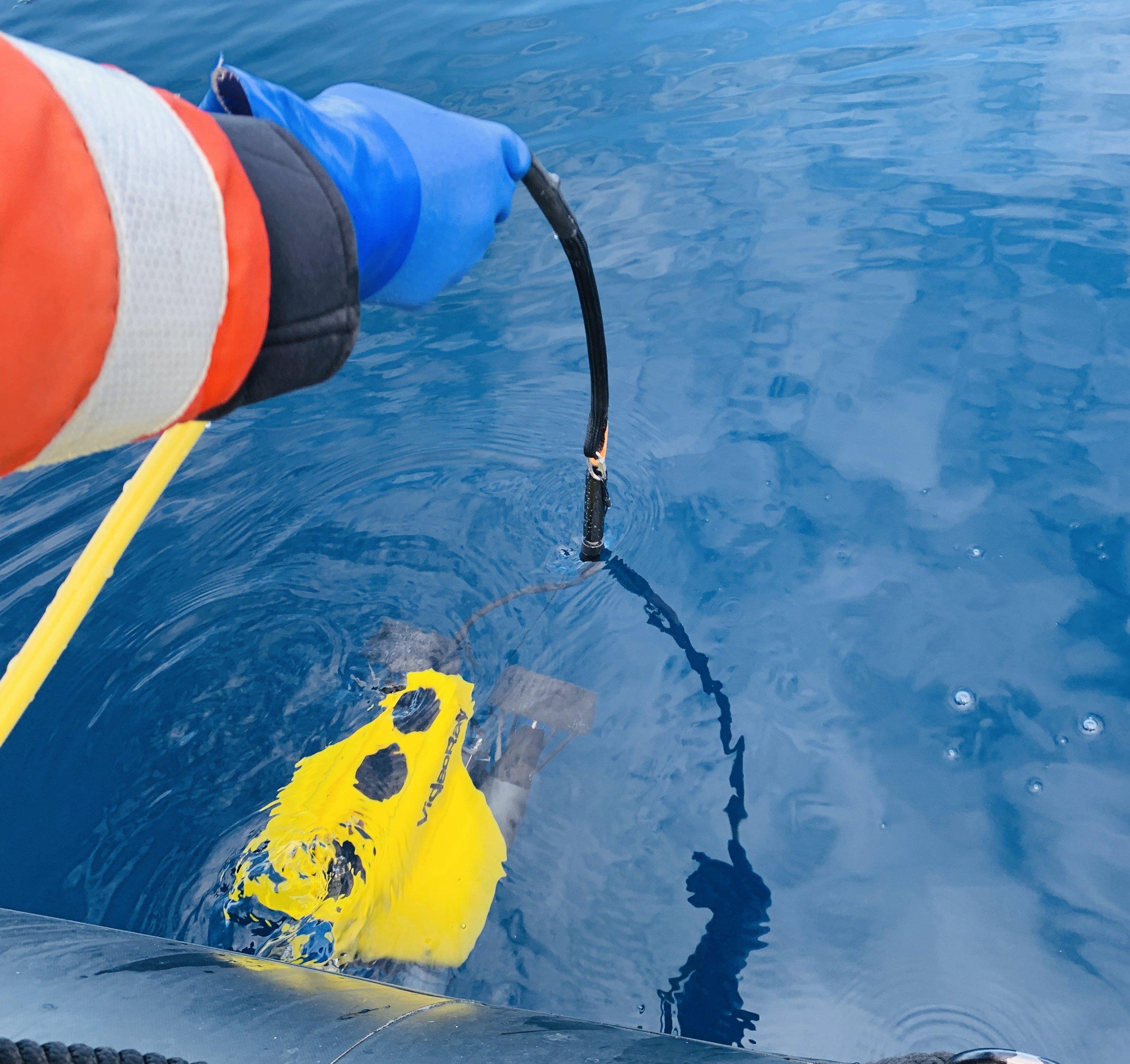 Warmouth_Underwater ROV.jpg