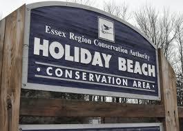 holiday beach.jpg