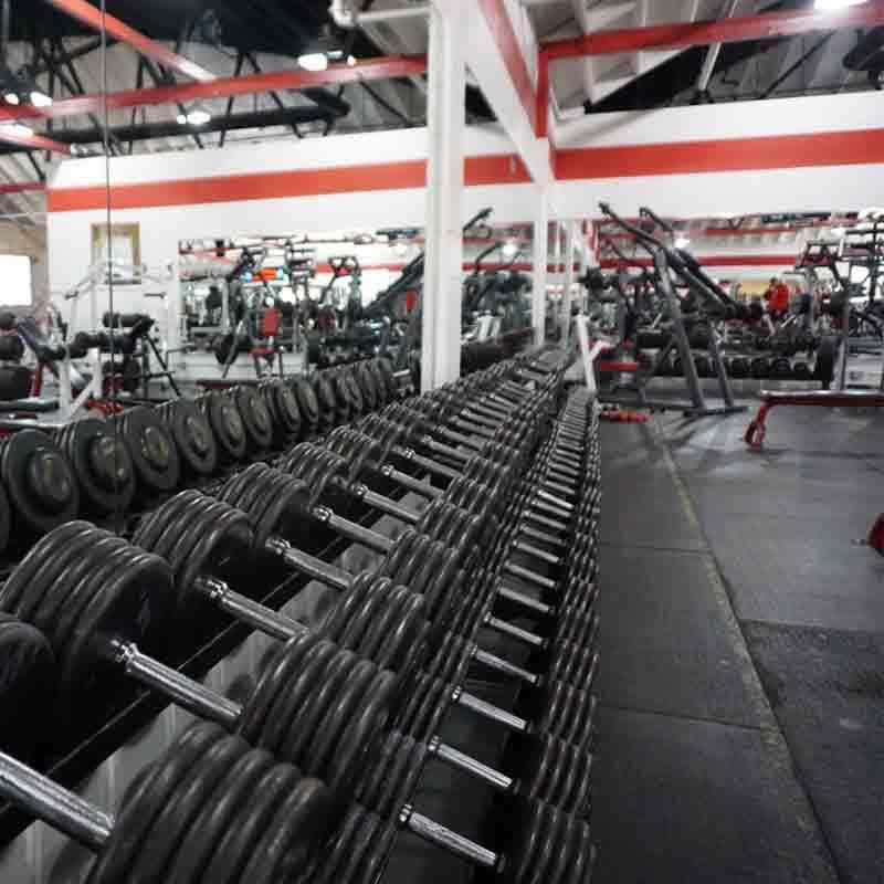 free_weights.jpg