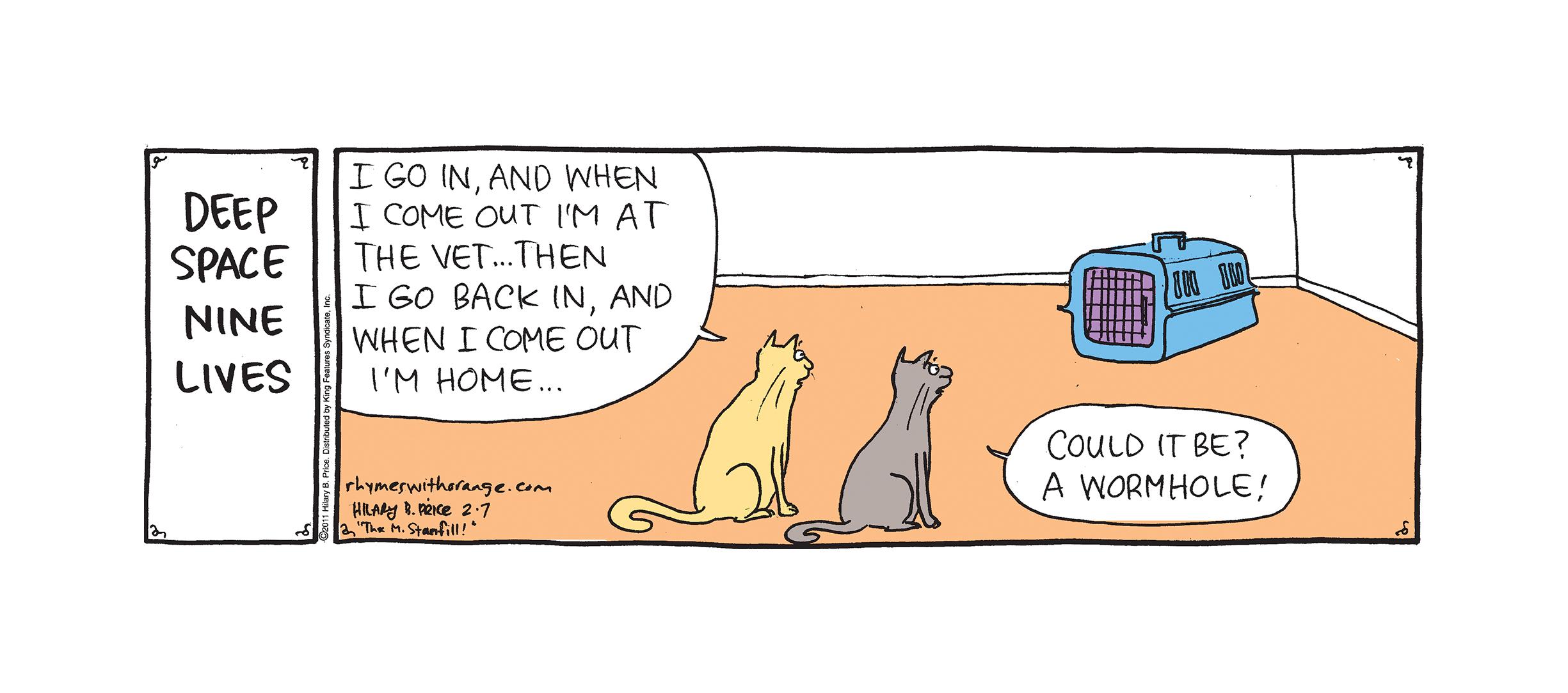 CatCarrierWormhole.jpg