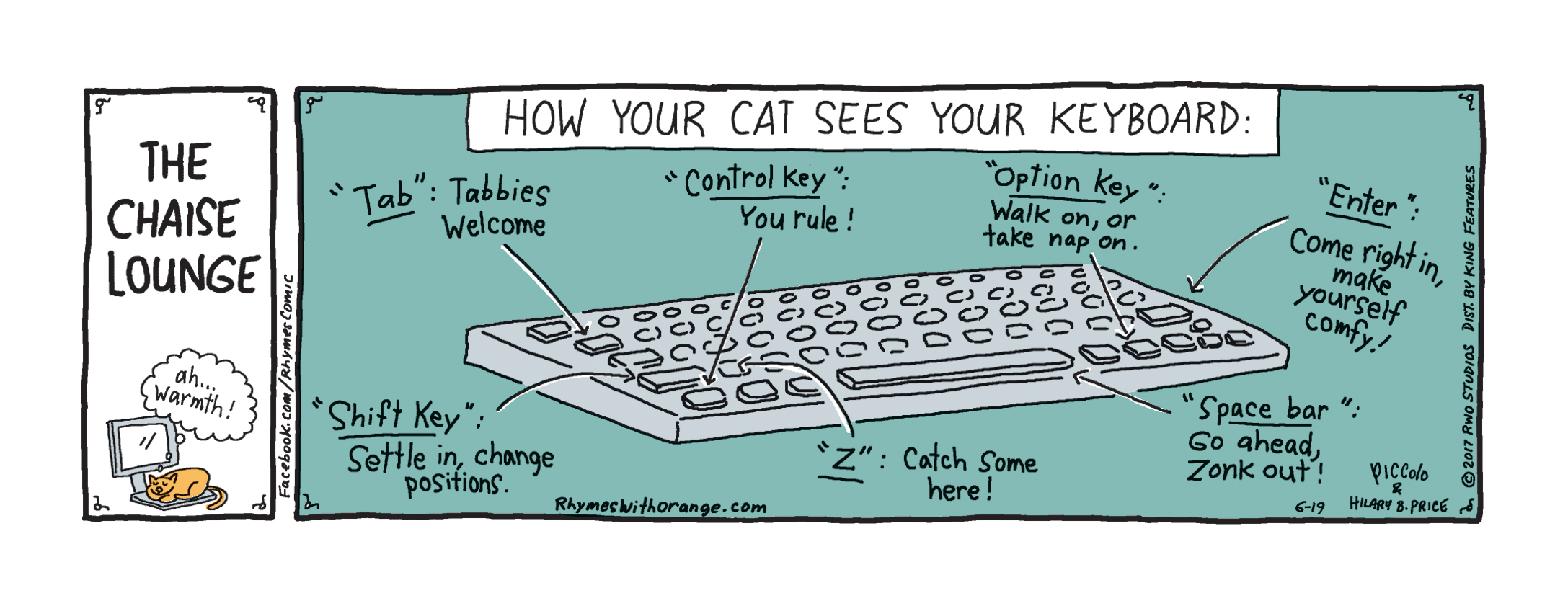 How Cat sees Keyboard.jpg