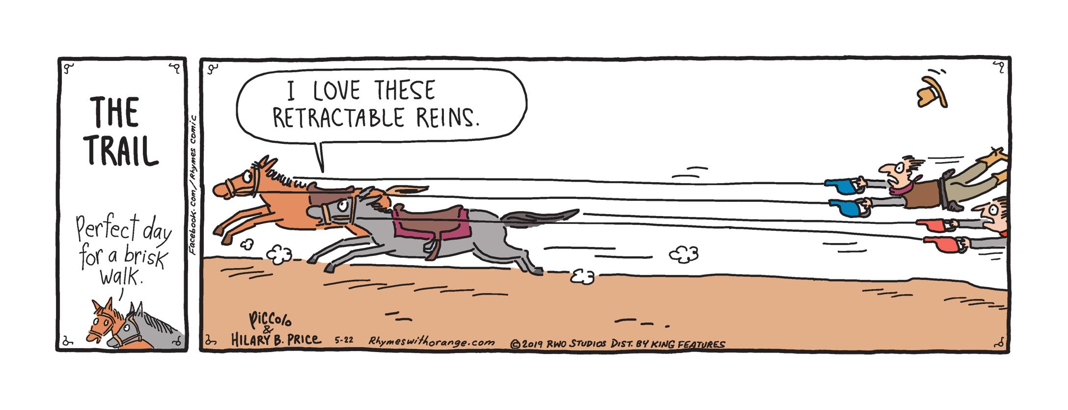 retractable reins.jpg