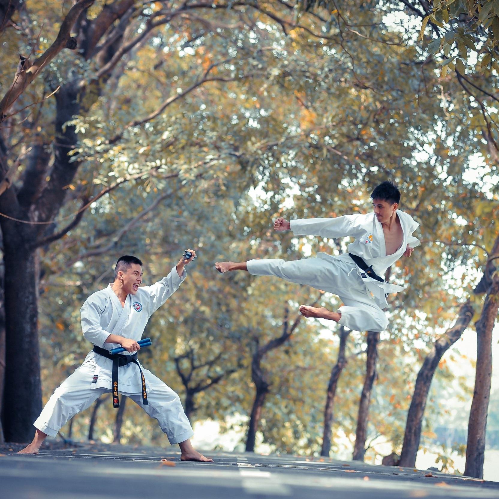 World Martial Arts Games -