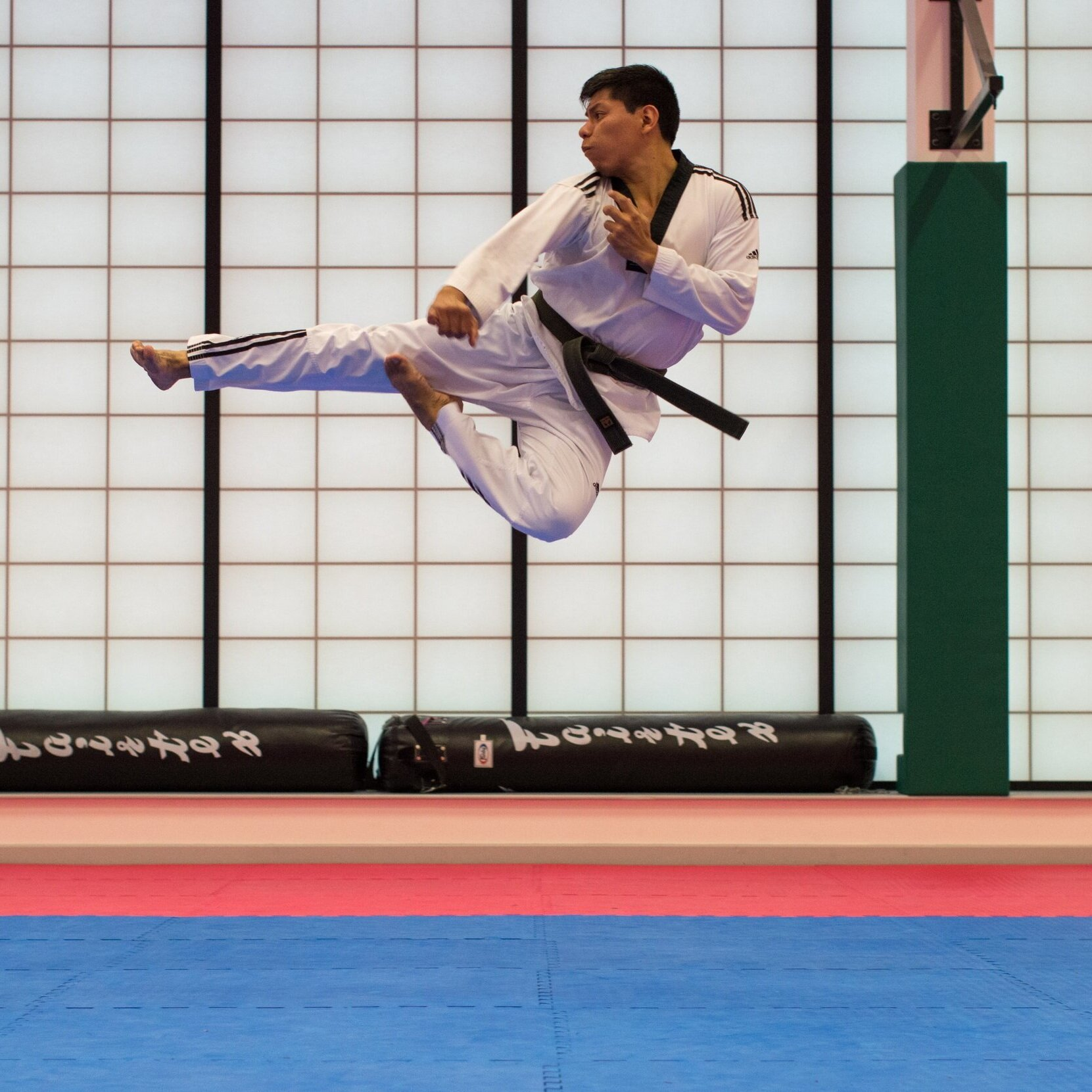 """world martial arts games - """"The World Martial Arts Games is about inclusion, we are Members of TAFISA (The Association For International Sport for All) TAFISA are recognised by the International Olympic Committee (IOC). TAFISA have Patronised the 2019 World Martial Arts Games."""" WMAGC"""