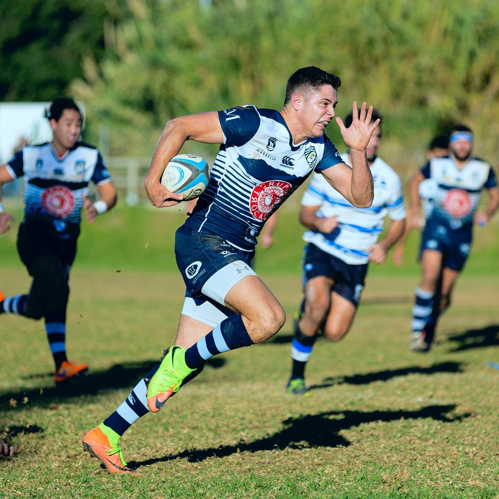 rugby league -
